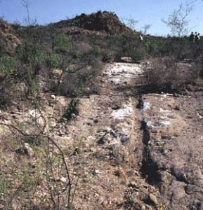 Photo: Remnants of Chihuahuan Trail