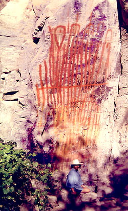 Tall Rock Shelter pictograph panel